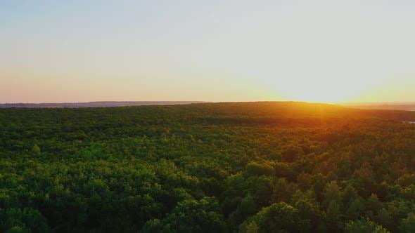 Idyllic nature at sunset