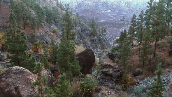Thumbnail for Flying over Rocks, Forests 4K