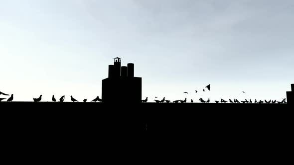 Cover Image for Silhouette of Birds on the Roof