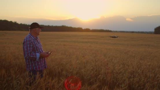 An Elderly Male Agronomist in a Field of Grain Crops Flies a Drone Using a Joystick Controller. An