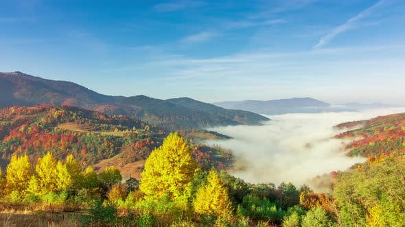 Morning Mist Over the Valley Among the Mountains in the Sunlight. Fog and Beautiful Nature