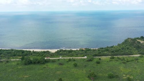 Baltic Coastline with Green Summer Forest and the Sea