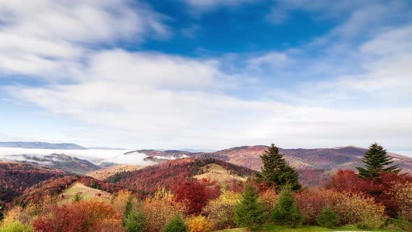 Wonderful Autumn Landscape with Beautiful Blue Sky and Majestic Clouds Forest Sunset Beautiful Fall