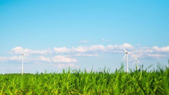 Thumbnail for Windkraftanlagen und Grünanlagen