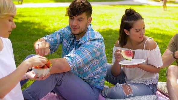 Thumbnail for Friends Eating Fruits at Picnic in Summer Park 44
