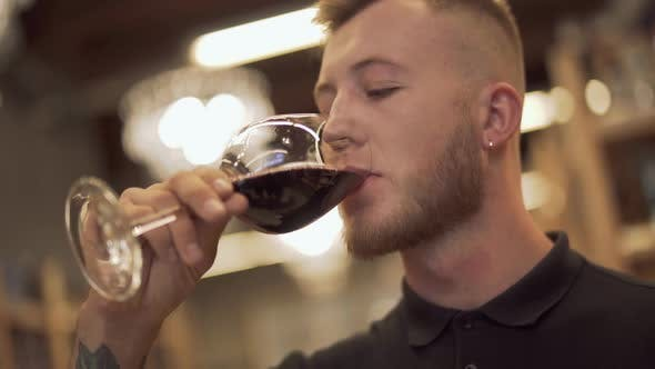 Thumbnail for Portrait of Handsome Male Drinking Wine in the Liquor Store. Man Enjoys Wine Glass