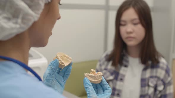 Thumbnail for Female Orthodontist Showing Jaw Impression to Patient