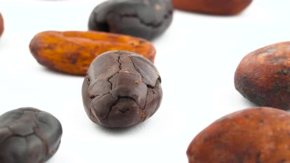 Thumbnail for Shooting of Scattered Cacao Fruit Beans. Roasted and Dried. Rotating on the Turntable Isolated