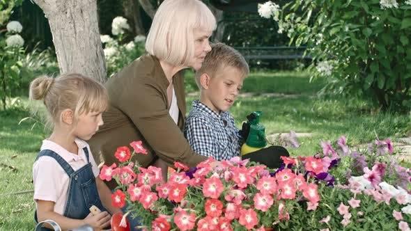 Thumbnail for Grandmother Teaching Grandchildren about Foliar Feeding