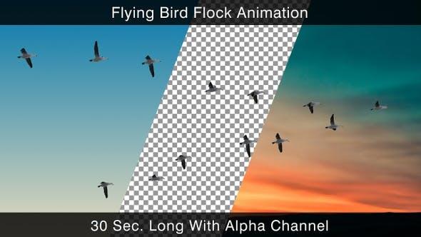 Thumbnail for Fliegender Vogel-Flock