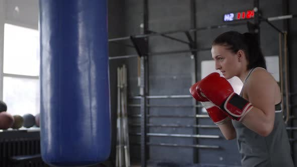Thumbnail for Female Athlete Punching the Bag in Boxing Gym
