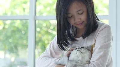 Cute Asian Girl Hugging And Holding Kitten