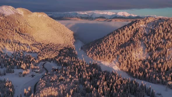 Flying over a winter forest towards the mountains