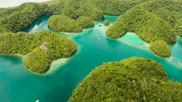 Thumbnail for Aerial View of Sugba Lagoon, Siargao,Philippines
