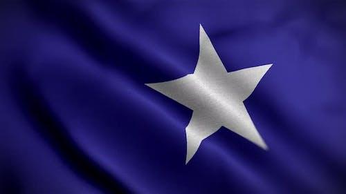 California Lone Star Flag Angle