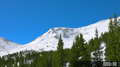 Aerial parallax of a snowy rocky mountain peak with trees in the foreground