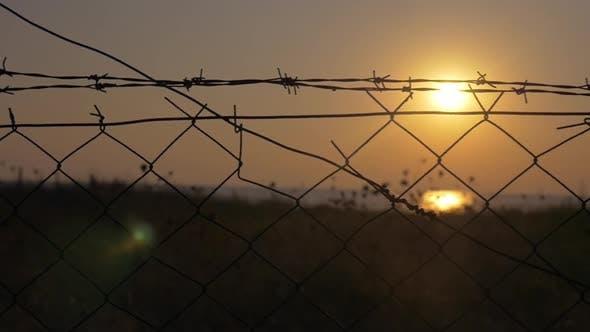 Sonnenuntergang hinter dem Stacheldraht