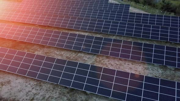 Thumbnail for Aerial Drone Flight At Sunset Over Solar Panels Farm Green Energy with the Sun's Rays Ver 5