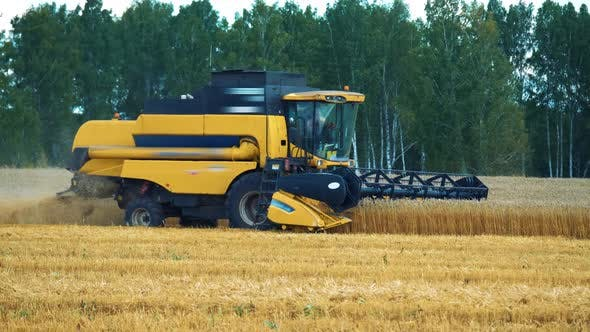 Thumbnail for Industrial Farming Harvest Landscape with Combine