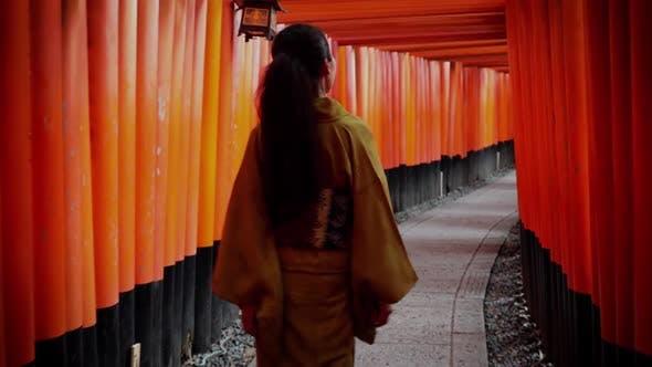 Thumbnail for Elegant Japanese woman in Kyoto Japan
