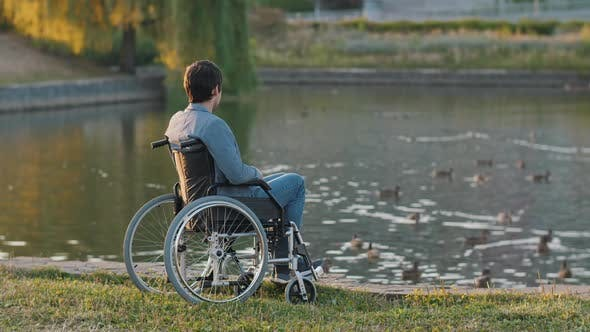 Handicapped Man on a Wheelchair Looks on Ducks