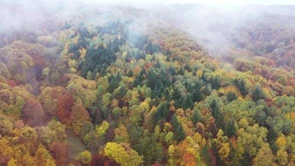 Wild Autumn Landscape With Clouds