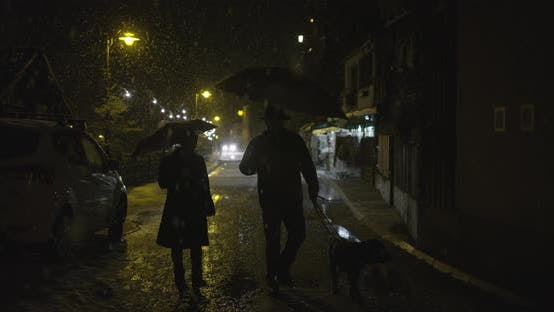 Thumbnail for People with a dog walking on a street at night