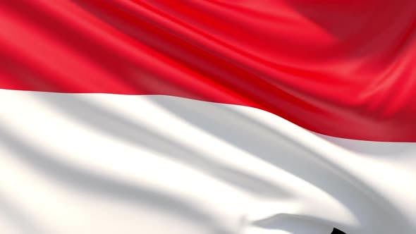 Thumbnail for Flag of Indonesia