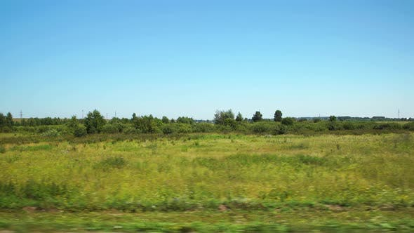 Thumbnail for Moving along a wild field with a low trees