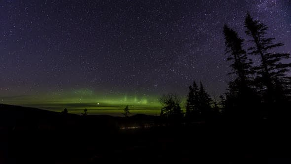 Thumbnail for Northern Lights Above Forest By Road