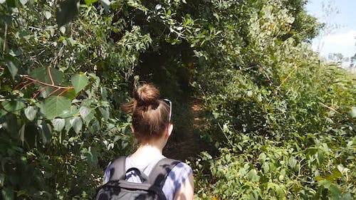 Follow To Female Hiker Backpack Walks Trail Tropical Forest
