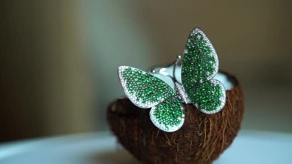 Thumbnail for Precious Butterfly Brooch