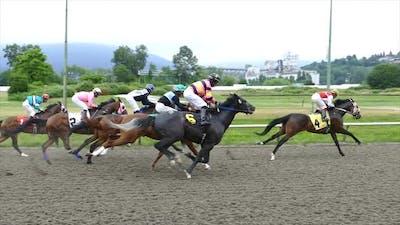 Racing Jockeys