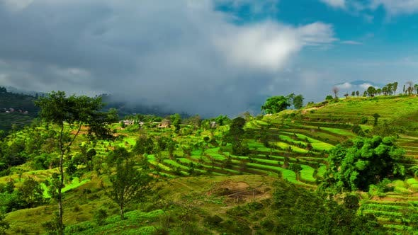 Time-lapse of a terraced, cultivated hillside in Nepal