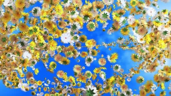 Spring Background 01 4K