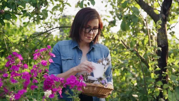 Woman in Summer Garden with Collected Dried Flowers Plant Seeds in Basket