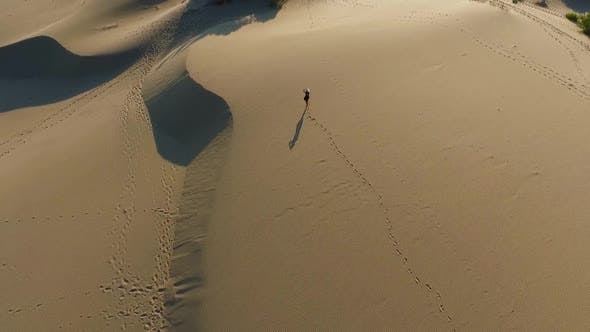 Cover Image for Walking In The Desert Aerial View