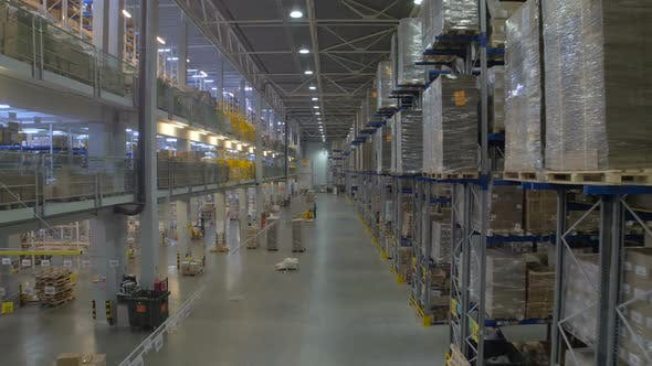 Huge Warehouse and Forklifts, Racks with Goods.