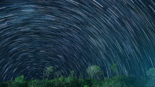 Thumbnail for Star Trails In Night Sky