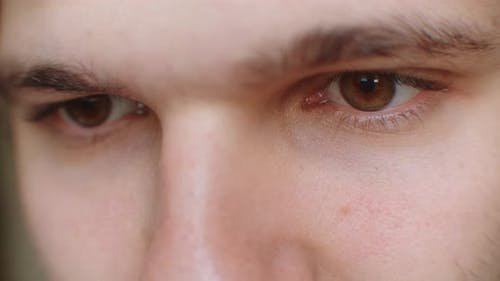 Perfect Eye Macro in a Sterile Environment and Perfect Vision in Resolution , Concept, the Vision of