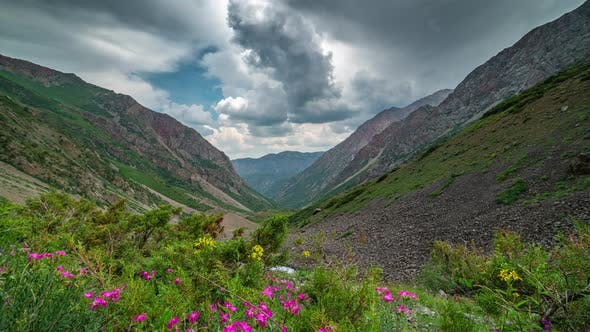 Thumbnail for Panoramic View of Beautiful Mountain Landscape in the Alps with Green Mountain Pastures with Flowers