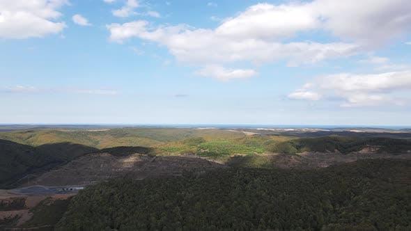 Thumbnail for Hyperlapse Forest Natural