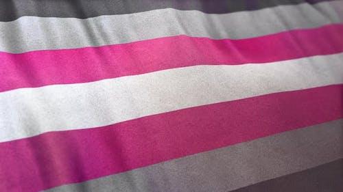 Demigirl Pride Flag Loop