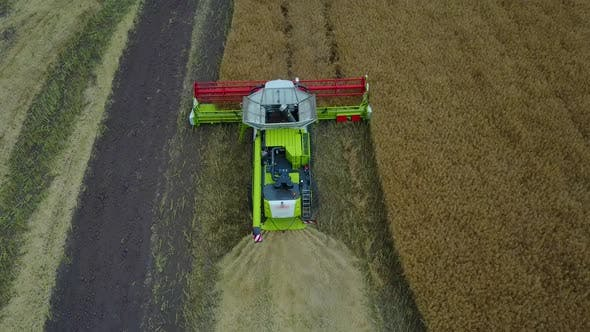 Thumbnail for Combine Harvester Working on a Field