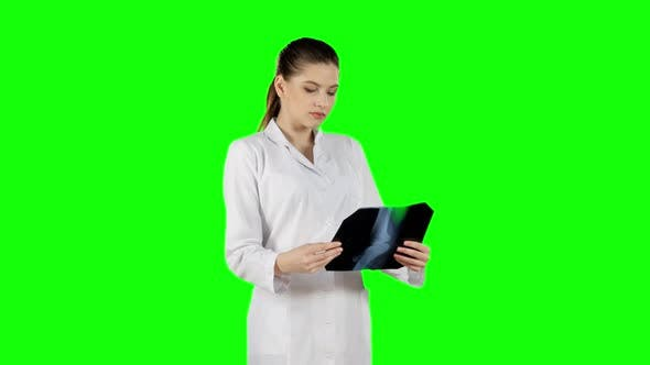 Thumbnail for Professional Doctor Working with X-ray Scan. Green Screen