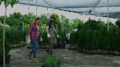 Gardeners Walking in Nursery Garden