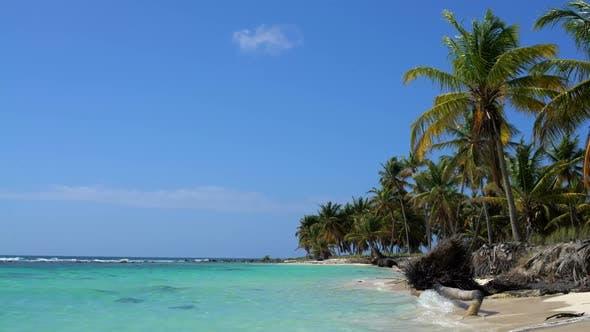 Thumbnail for Beautiful Island