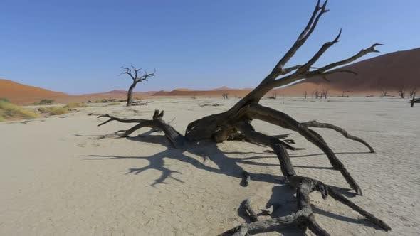 Sossusvlei in Namib desert , Namibia, Africa landscape