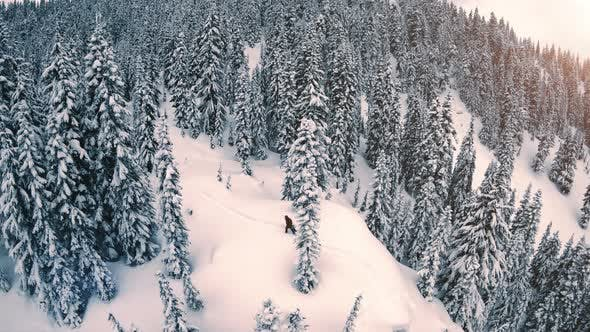 Thumbnail for Extreme Snowboarder Hiking Backcountry Mountain Slopes Aerial
