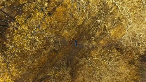 Travelers walking on fotpath in autumn forest